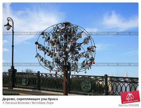 Дерево, скрепляющее узы брака, эксклюзивное фото № 319976, снято 5 июня 2008 г. (c) Наталья Волкова / Фотобанк Лори