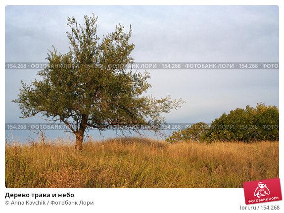 Купить «Дерево трава и небо», фото № 154268, снято 30 августа 2006 г. (c) Anna Kavchik / Фотобанк Лори