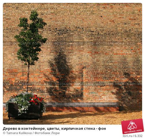 Дерево в контейнере, цветы, кирпичная стена - фон, фото № 6332, снято 30 июля 2006 г. (c) Tamara Kulikova / Фотобанк Лори