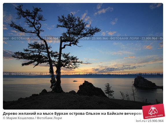 Дерево желаний на мысе Бурхан острова Ольхон на Байкале вечером с теплоходом, фото № 23900964, снято 15 июня 2015 г. (c) Marika / Фотобанк Лори