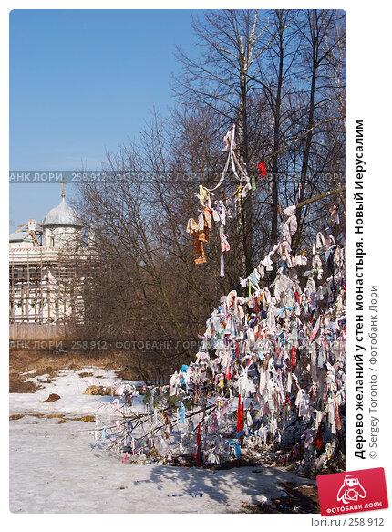 Дерево желаний у стен монастыря. Новый Иерусалим, фото № 258912, снято 30 марта 2008 г. (c) Sergey Toronto / Фотобанк Лори