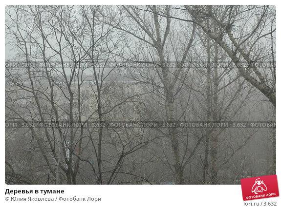 Деревья в тумане, фото № 3632, снято 10 апреля 2006 г. (c) Юлия Яковлева / Фотобанк Лори