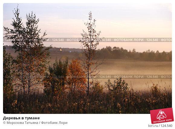 Деревья в тумане, фото № 124540, снято 1 октября 2007 г. (c) Морозова Татьяна / Фотобанк Лори