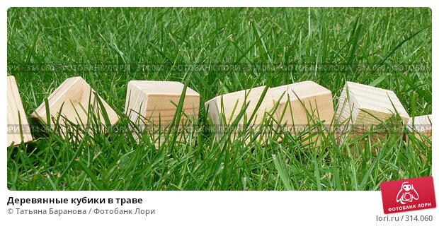 Купить «Деревянные кубики в траве», фото № 314060, снято 17 мая 2008 г. (c) Татьяна Баранова / Фотобанк Лори