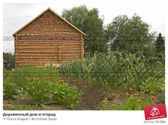 Деревянный дом и огород, фото № 56804, снято 30 июня 2007 г. (c) Ольга Шаран / Фотобанк Лори