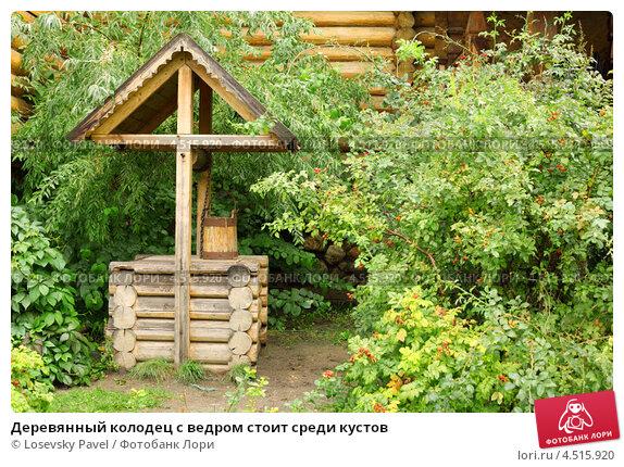 Купить «Деревянный колодец с ведром стоит среди кустов», фото № 4515920, снято 11 сентября 2011 г. (c) Losevsky Pavel / Фотобанк Лори