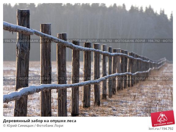 Деревянный забор на опушке леса, фото № 194792, снято 8 января 2008 г. (c) Юрий Синицын / Фотобанк Лори