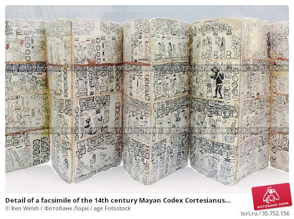Detail of a facsimile of the 14th century Mayan Codex Cortesianus... Редакционное фото, фотограф Ken Welsh / age Fotostock / Фотобанк Лори