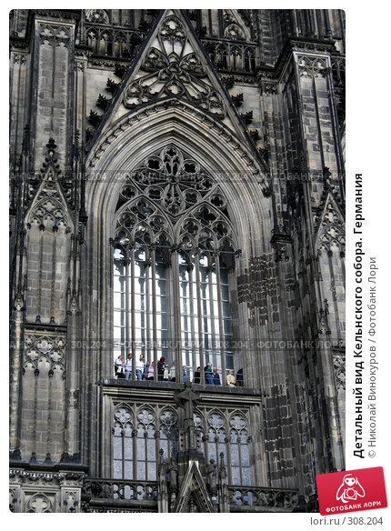 Детальный вид Кельнского собора. Германия, фото № 308204, снято 8 марта 2017 г. (c) Николай Винокуров / Фотобанк Лори
