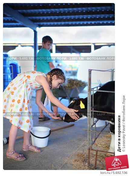 Купить «Дети в коровнике», фото № 5692136, снято 3 июня 2013 г. (c) Losevsky Pavel / Фотобанк Лори
