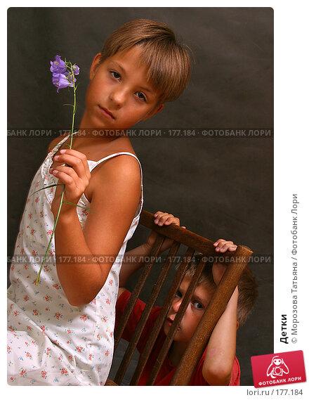Детки, фото № 177184, снято 13 июля 2004 г. (c) Морозова Татьяна / Фотобанк Лори