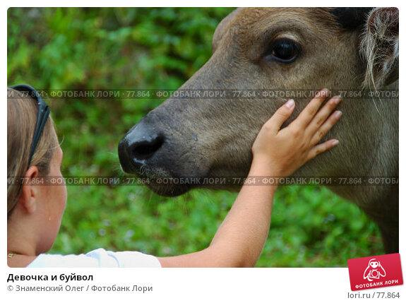Девочка и буйвол, эксклюзивное фото № 77864, снято 17 августа 2007 г. (c) Знаменский Олег / Фотобанк Лори