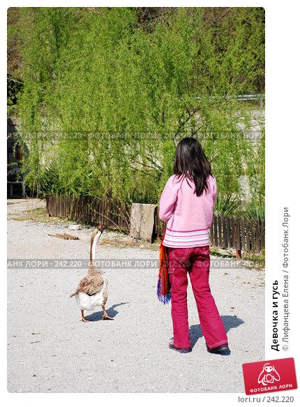 Девочка и гусь, фото № 242220, снято 27 марта 2008 г. (c) Лифанцева Елена / Фотобанк Лори