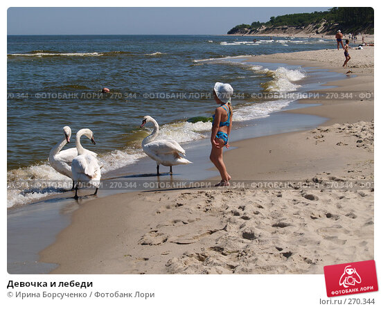Девочка и лебеди, эксклюзивное фото № 270344, снято 9 июня 2007 г. (c) Ирина Борсученко / Фотобанк Лори