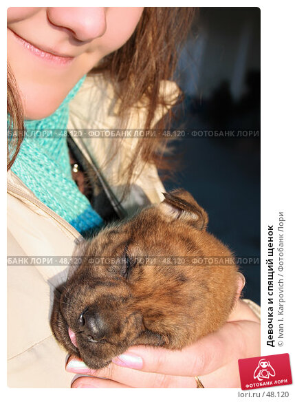 Купить «Девочка и спящий щенок», фото № 48120, снято 11 марта 2007 г. (c) Ivan I. Karpovich / Фотобанк Лори