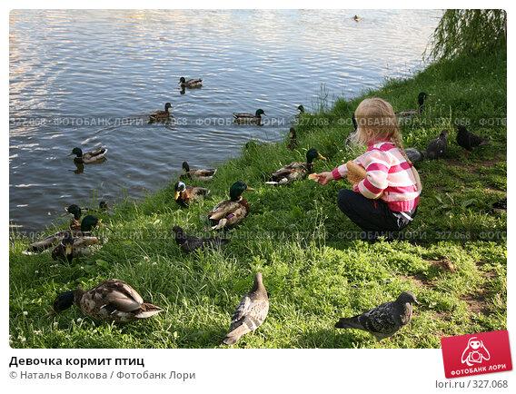 Девочка кормит птиц, эксклюзивное фото № 327068, снято 18 июня 2008 г. (c) Наталья Волкова / Фотобанк Лори