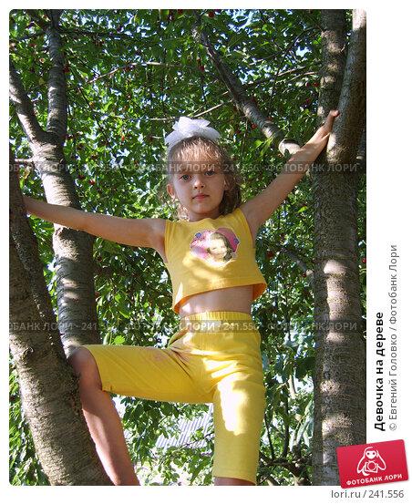 Девочка на дереве, фото № 241556, снято 1 июля 2007 г. (c) Евгений Головко / Фотобанк Лори