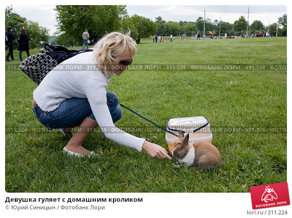 Купить «Девушка гуляет с домашним кроликом», фото № 311224, снято 31 мая 2008 г. (c) Юрий Синицын / Фотобанк Лори