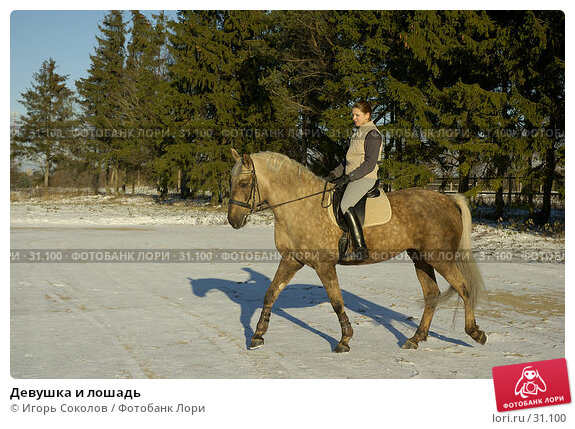 Девушка и лошадь, фото № 31100, снято 10 декабря 2016 г. (c) Игорь Соколов / Фотобанк Лори