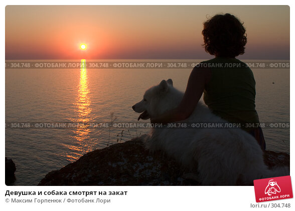 Девушка и собака смотрят на закат, фото № 304748, снято 21 января 2017 г. (c) Максим Горпенюк / Фотобанк Лори