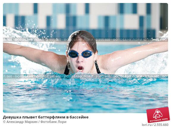 Девушка плывет баттерфляем в бассейне; фото № 2555660 ...: http://lori.ru/2555660