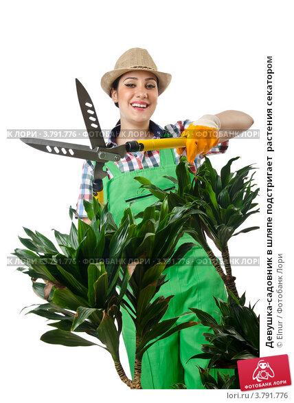 hozyayka-sadovnik
