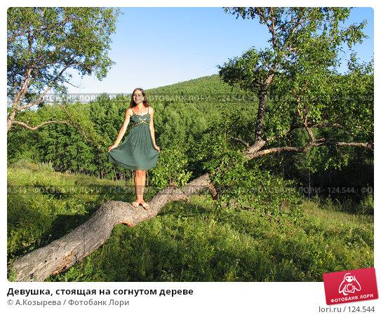 Купить «Девушка, стоящая на согнутом дереве», фото № 124544, снято 26 августа 2007 г. (c) A.Козырева / Фотобанк Лори