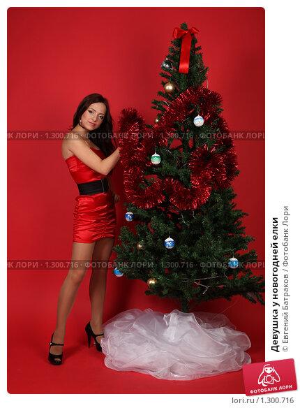 Голая елка фото