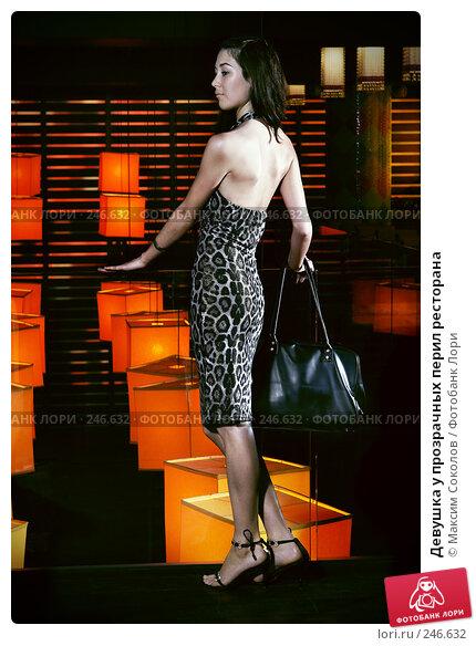 Девушка у прозрачных перил ресторана, фото № 246632, снято 14 февраля 2008 г. (c) Максим Соколов / Фотобанк Лори