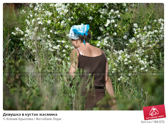 Девушка в кустах жасмина, фото № 189572, снято 8 июля 2007 г. (c) Ксения Крылова / Фотобанк Лори