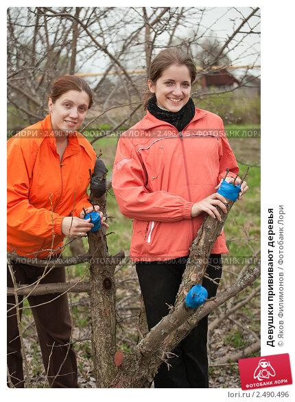 Девушки прививают деревья. Стоковое фото, фотограф Яков Филимонов / Фотобанк Лори