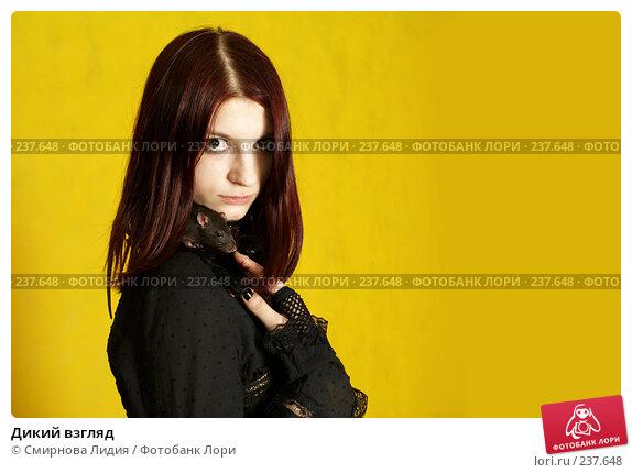 Дикий взгляд, фото № 237648, снято 29 марта 2008 г. (c) Смирнова Лидия / Фотобанк Лори