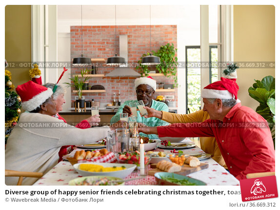 Diverse group of happy senior friends celebrating christmas together, toasting with juice. Стоковое фото, агентство Wavebreak Media / Фотобанк Лори