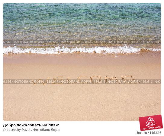 Добро пожаловать на пляж, фото № 116616, снято 2 января 2006 г. (c) Losevsky Pavel / Фотобанк Лори