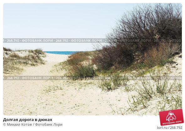 Долгая дорога в дюнах, фото № 268792, снято 10 апреля 2007 г. (c) Михаил Котов / Фотобанк Лори