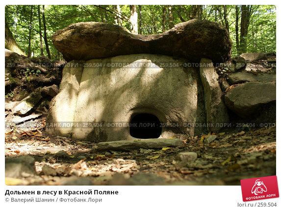 Дольмен в лесу в Красной Поляне, фото № 259504, снято 22 сентября 2007 г. (c) Валерий Шанин / Фотобанк Лори