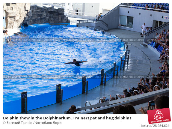 Купить «Dolphin show in the Dolphinarium. Trainers pat and hug dolphins», фото № 28984624, снято 10 июля 2015 г. (c) Евгений Ткачёв / Фотобанк Лори