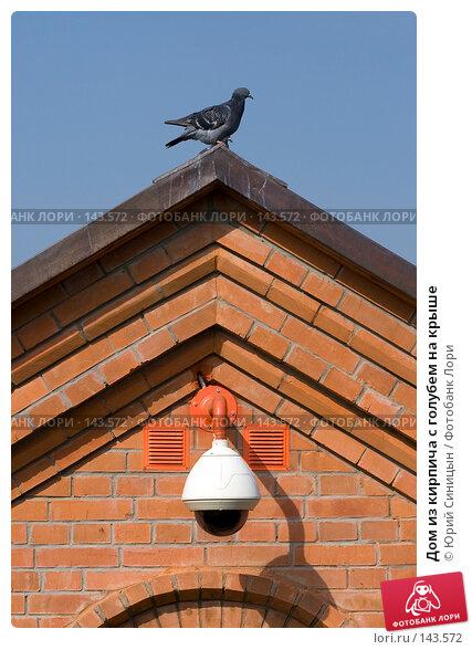 Дом из кирпича с голубем на крыше, фото № 143572, снято 23 сентября 2007 г. (c) Юрий Синицын / Фотобанк Лори