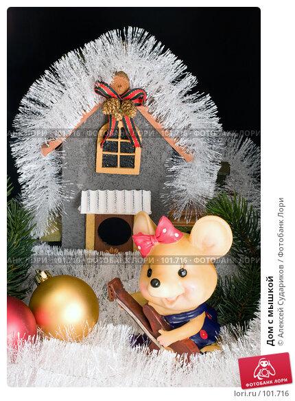 Купить «Дом с мышкой», фото № 101716, снято 21 октября 2007 г. (c) Алексей Судариков / Фотобанк Лори