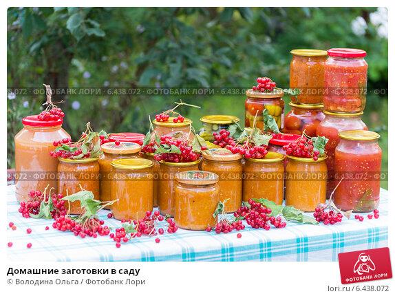 Купить «Домашние заготовки в саду», фото № 6438072, снято 1 сентября 2014 г. (c) Володина Ольга / Фотобанк Лори