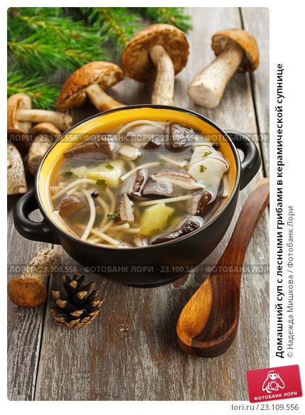 Домашний суп с лесными грибами в керамической супнице, фото № 23109556, снято 17 июня 2016 г. (c) Надежда Мишкова / Фотобанк Лори
