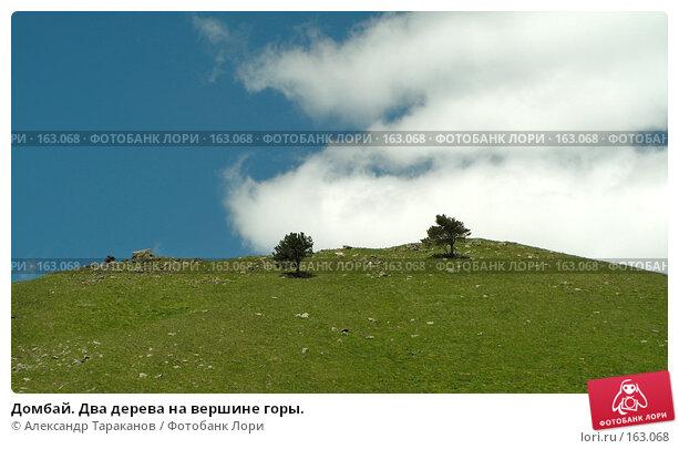 Домбай. Два дерева на вершине горы., эксклюзивное фото № 163068, снято 28 мая 2017 г. (c) Александр Тараканов / Фотобанк Лори