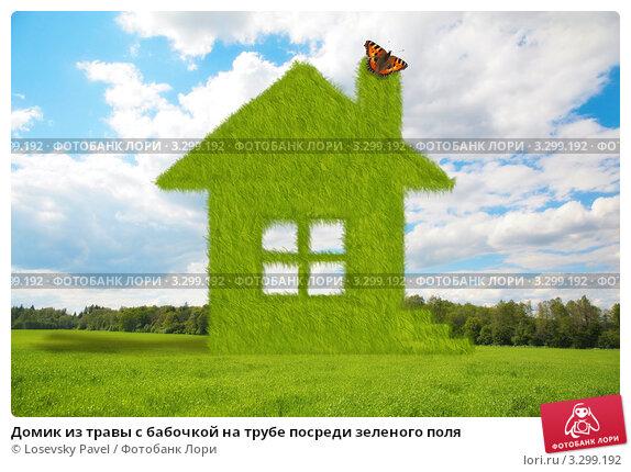 Купить «Домик из травы с бабочкой на трубе посреди зеленого поля», фото № 3299192, снято 25 апреля 2019 г. (c) Losevsky Pavel / Фотобанк Лори