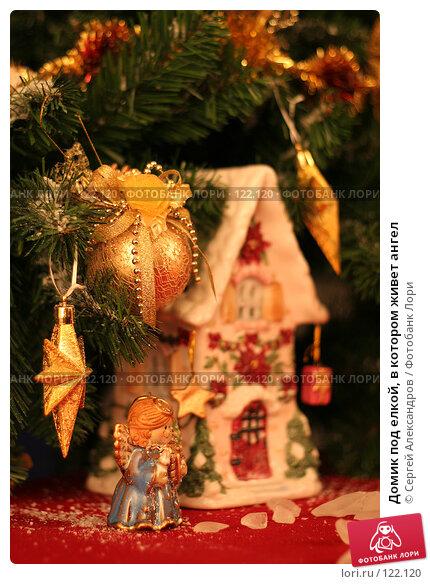 Домик под елкой, в котором живет ангел, фото № 122120, снято 3 ноября 2006 г. (c) Сергей Александров / Фотобанк Лори