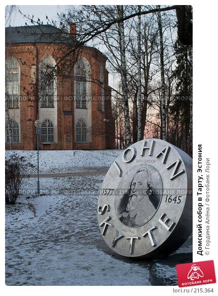 Домский собор в Тарту, Эстония, фото № 215364, снято 5 января 2008 г. (c) Гордина Алёна / Фотобанк Лори