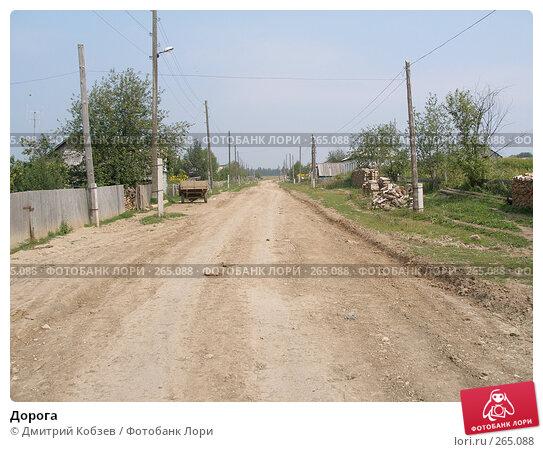 Дорога, фото № 265088, снято 12 августа 2005 г. (c) Дмитрий Кобзев / Фотобанк Лори