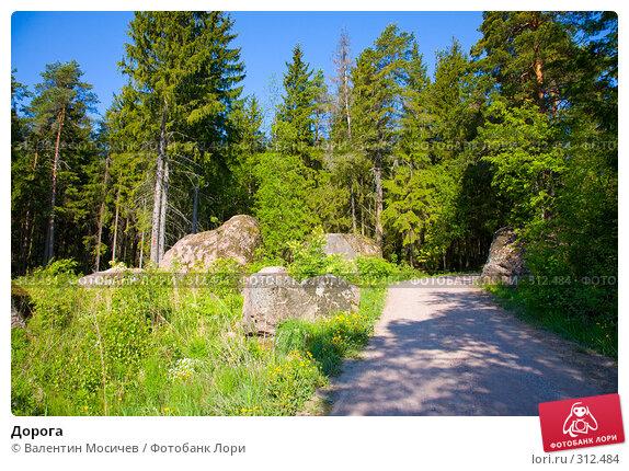 Дорога, фото № 312484, снято 25 мая 2008 г. (c) Валентин Мосичев / Фотобанк Лори