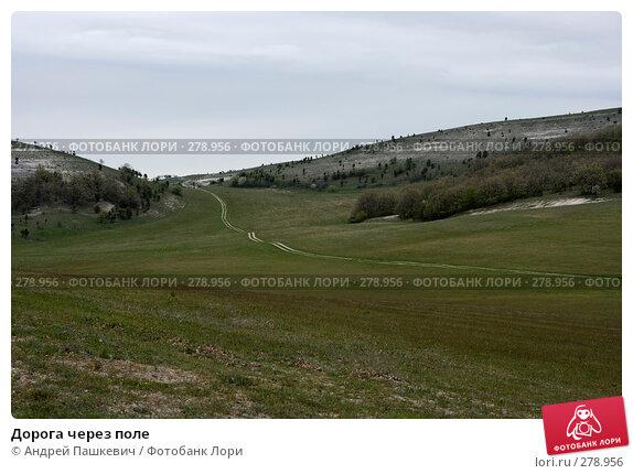 Дорога через поле, фото № 278956, снято 2 мая 2007 г. (c) Андрей Пашкевич / Фотобанк Лори