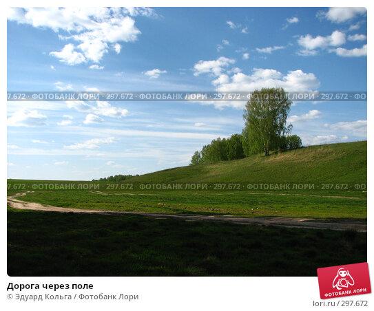 Дорога через поле, фото № 297672, снято 4 мая 2008 г. (c) Эдуард Кольга / Фотобанк Лори