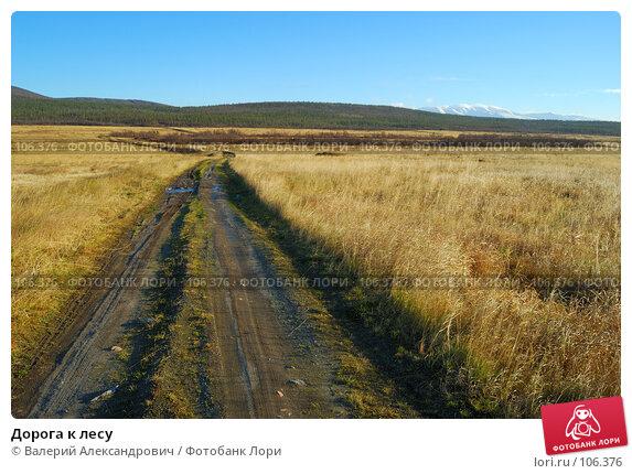 Дорога к лесу, фото № 106376, снято 20 октября 2007 г. (c) Валерий Александрович / Фотобанк Лори